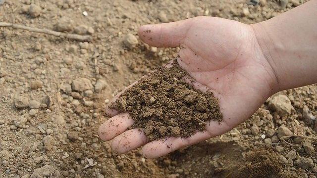 Sensors in Development To Improve Soil Management