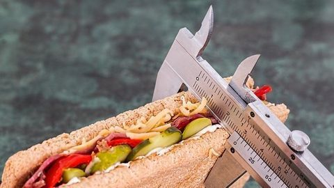 Established Theory of Diet Impact on Lifespan Challenged
