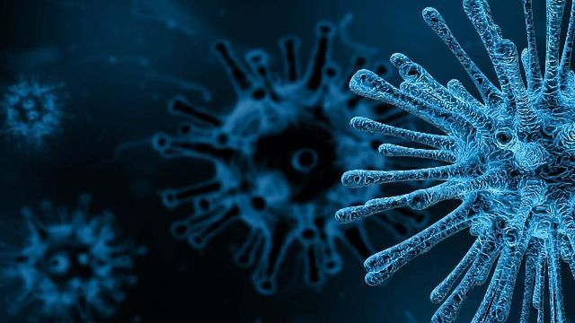 For Infectious Disease Testing, Flexibility Is Key