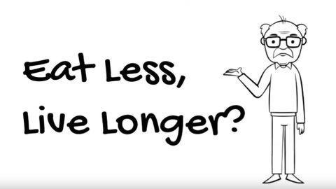 Eat less, live longer?
