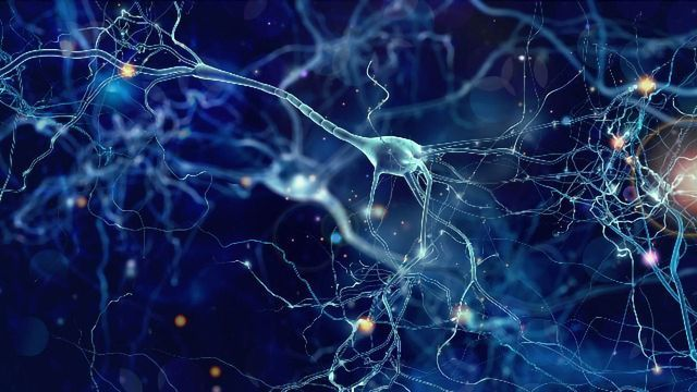 Can an Amino Acid Help to Restore Memories in Alzheimer's Disease? New Research Sheds Light