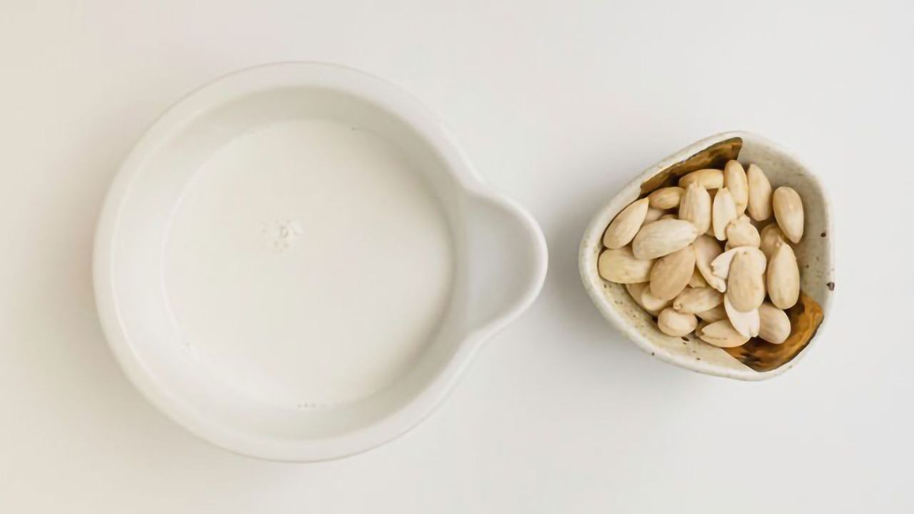 Benefits of Eating More Plant Protein and Dairy Instead of Red Meat