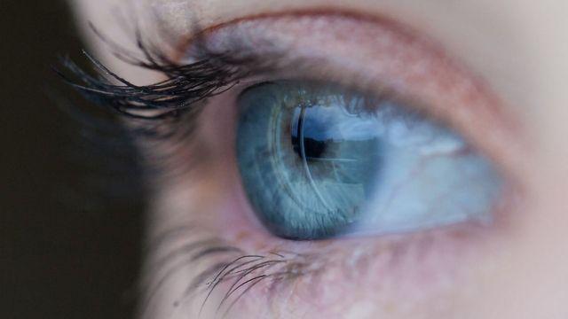"""Primitive"" Stem Cells Regenerate Blood Vessels in the Eye"