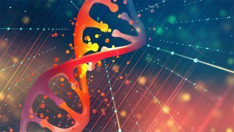 GeneArt Gene Synthesis