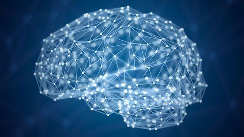 Brain Reward Circuitry Functions Differently in Anorexia Patients