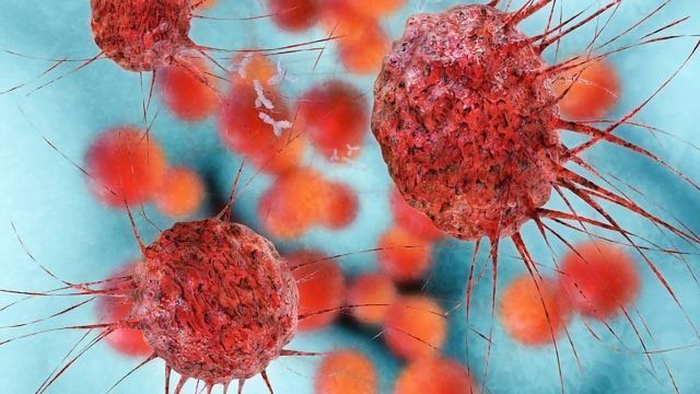 Chemical Conjugate Simultaneously Attacks Several Cancer Targets