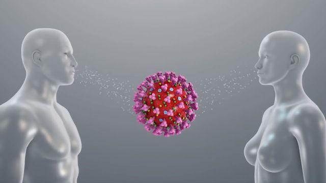 The Coronavirus Outbreak Explained Through 3D Medical Animation