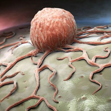 Targeting the Tumor Microenvironment