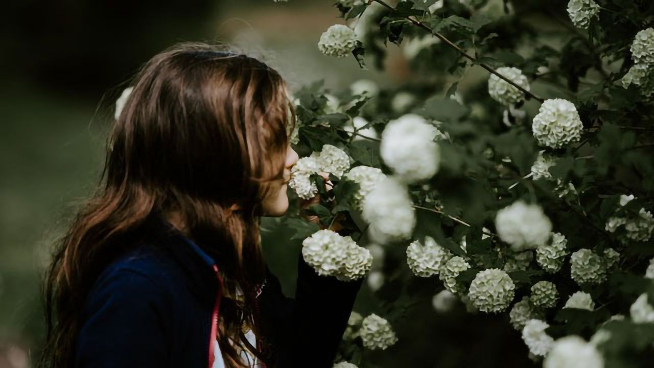 The Scents That Spark Our Memories