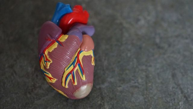 Statins Could Help Reduce Risk of Cancer Treatment-related Heart Damage