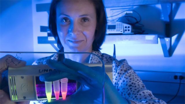 Coronavirus Testing Kits to Be Developed Using Pioneering Imaging Tech