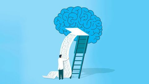 The Key to Keeping Working Memory Working