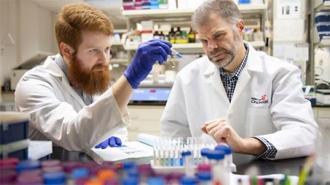 Fat Busting Proteins Produced in the Laboratory