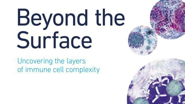 Beyond the Surface - Uncovering the Layers of Immune Cell Complexity