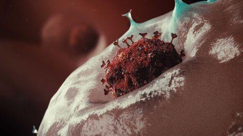 COVID-19 Coronavirus Vaccine: Everything You Need to Know