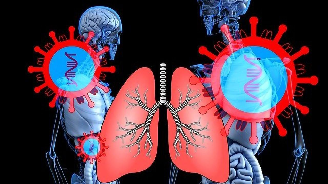 New Immune Cell on the Block During Viral Lung Infections