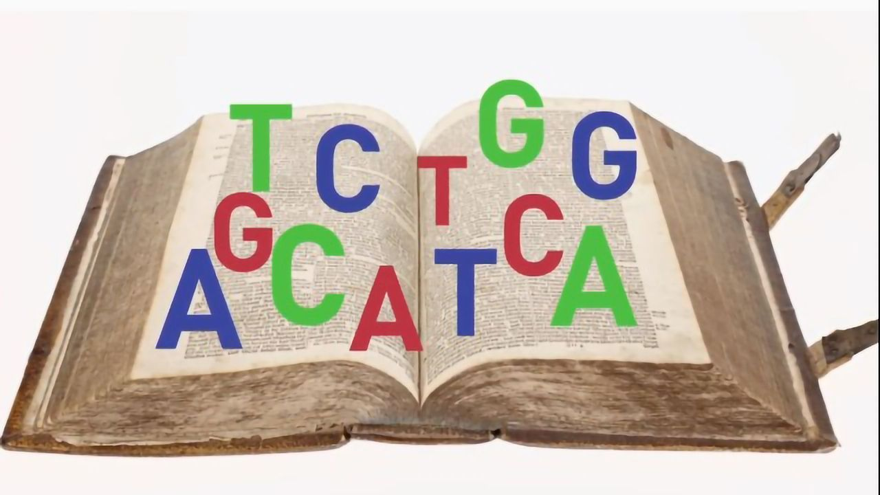 Whole Genome Sequencing for Infectious Disease Outbreaks