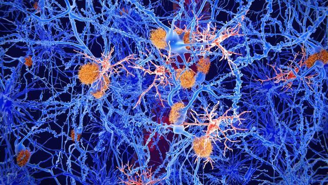 Spinal Nerve Healing Enhanced by Boost in Cellular Energy, New Findings Reveal