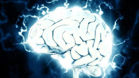 Cognitive Intelligence is a Whole Brain Phenomenon, According to New Findings