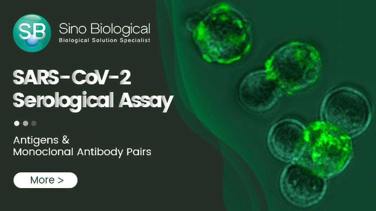Reagents for Serological Assay of SARS-CoV-2