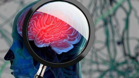 Novel Target for a Type of Pediatric Brain Tumor Identified