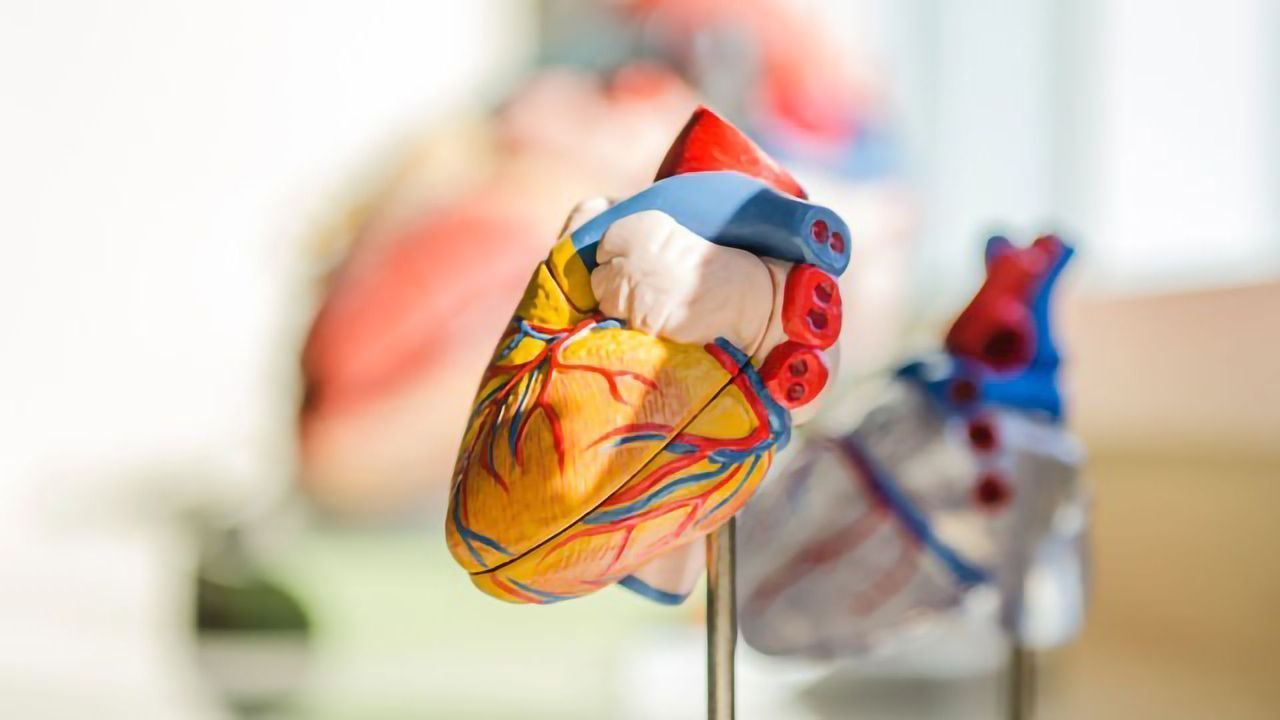 Positive Early-stage Results for Novel Micro-RNA Therapeutic for Ischemic Heart Diseases