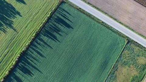 """Tackling Nitrate Pollution A """"Greener"""" Way"""