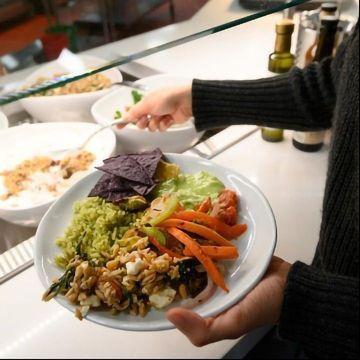 What Motivates Vegetarianism?