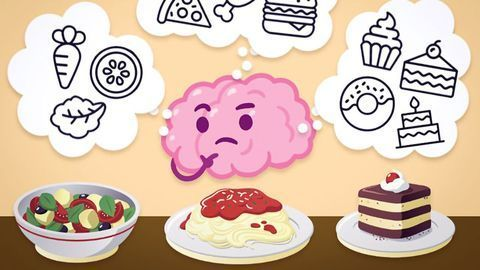 """The Brain Cells That Encode the Memory for """"Dessert"""""""