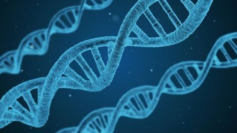 Wyatt Technology Pioneers Multi-CQA Method for Gene Vectors