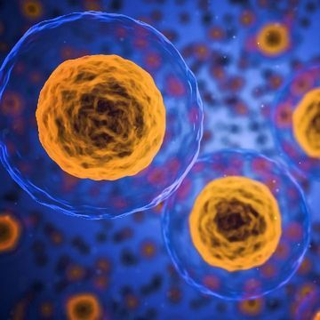A Cheaper Way To Study the Immune System, One Cell at a Time