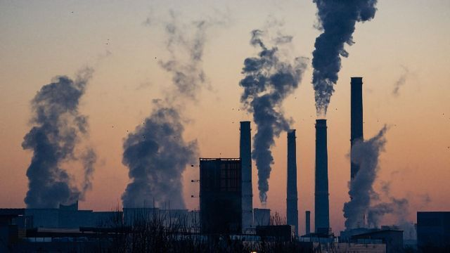 Low Levels of Air Pollution Impact Gene Expression   Technology ...