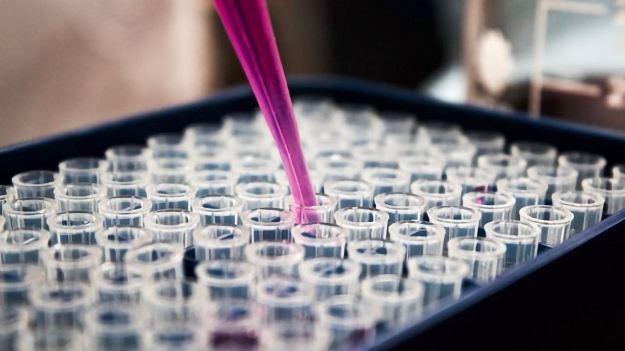 Molecular Testing – Closing the Gap Between TB Detection and Treatment