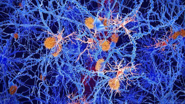 Brain Injury-suppressing Drug Passes Human Safety Testing