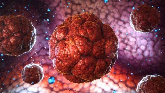 Experimental Drug Prevents Tumor Regrowth in Mice
