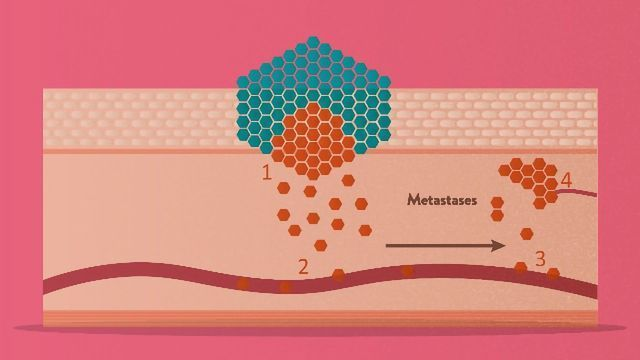 Circulating Tumor Cells: Detection and Applications