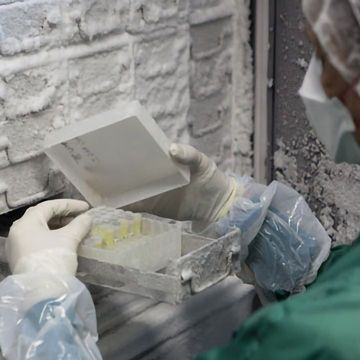 Freezing Life: The Current Trends in Cryopreservation