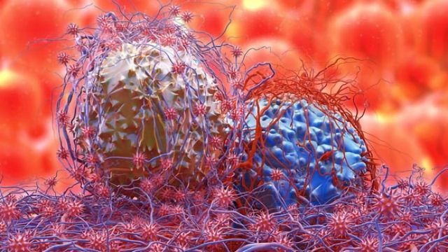 New Method of Mapping Molecules on Tumor Cells