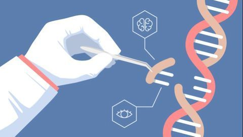 The Golden Age of Genome Editing
