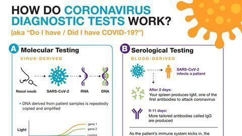 How Do Coronavirus Diagnostic Tests Work?