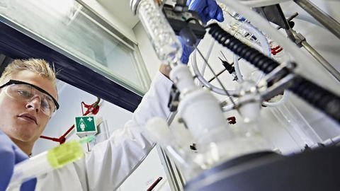 Keeping Enzymes in Shape