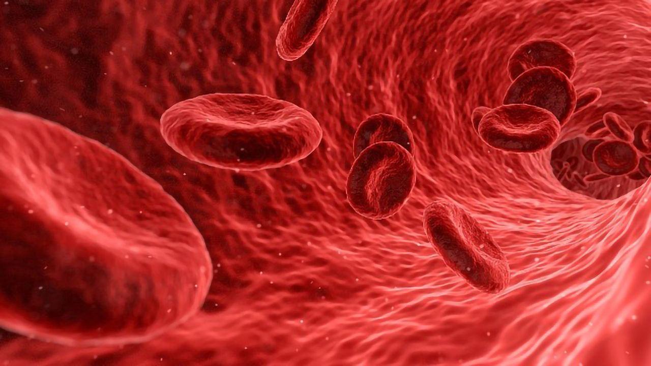 New Alzheimer's Disease Blood Test Developed