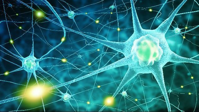 Brain Cell Models Hope To Understand Sanfilippo Syndrome