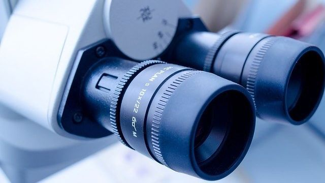 New Leica Platform Adds Additional Dimension of Information to Confocal Imaging