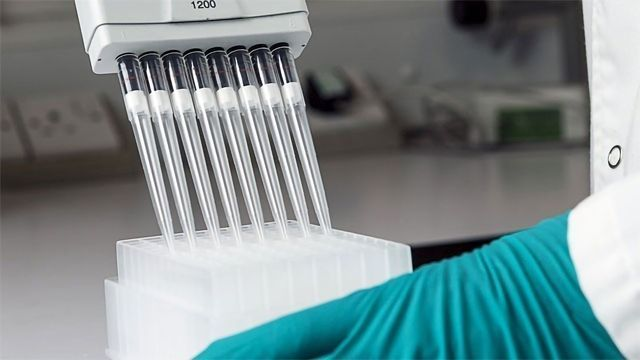 High Quality Protein-Free Samples for MS Analysis