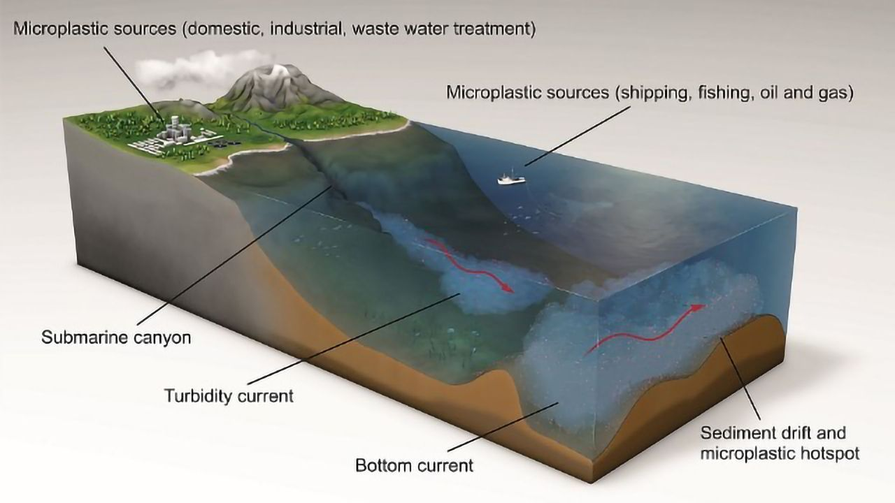 Highest Ever Density of Microplastics Discovered on Seabed