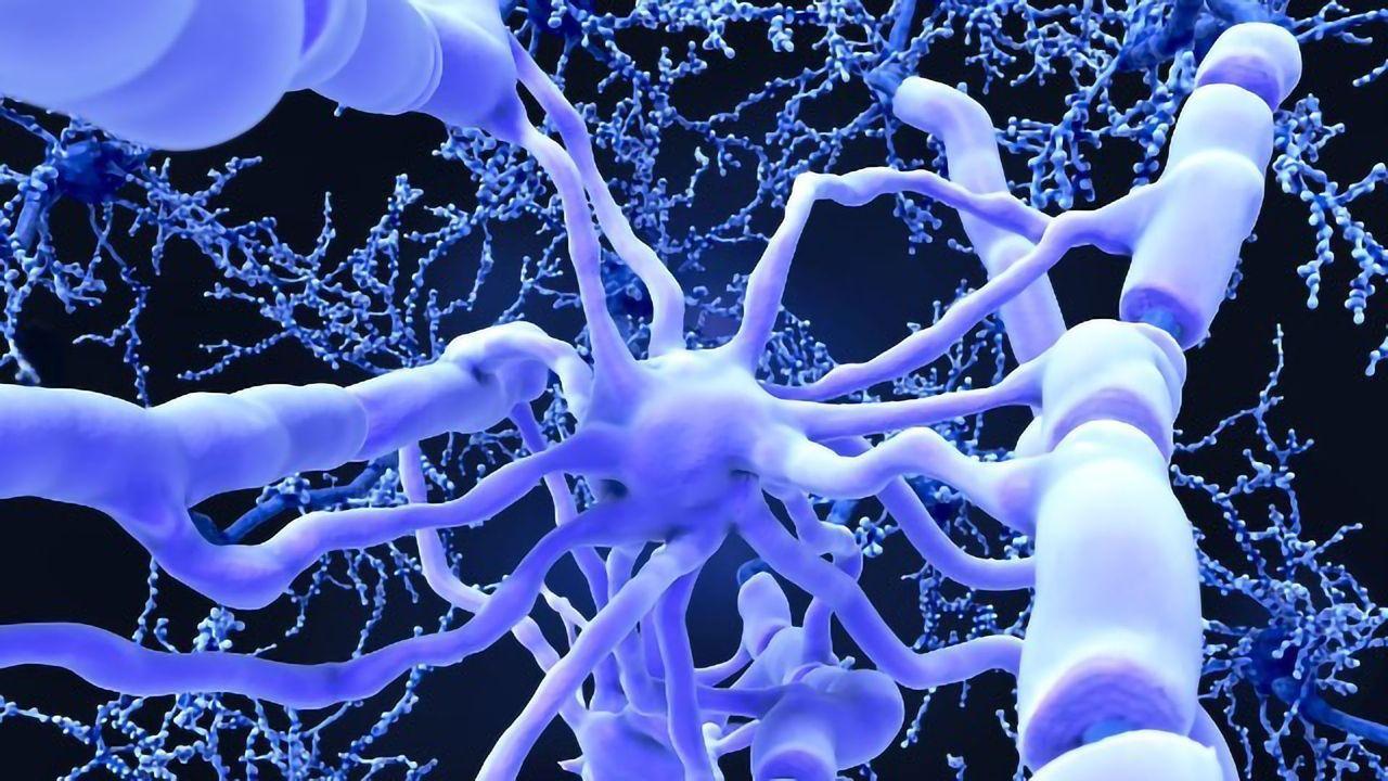 APOE4, a Genetic Culprit for Alzheimer's Disease, Triggers Leaks in the Brain's Plumbing System