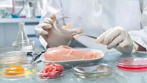Food Safety and Testing for Emerging Contaminants