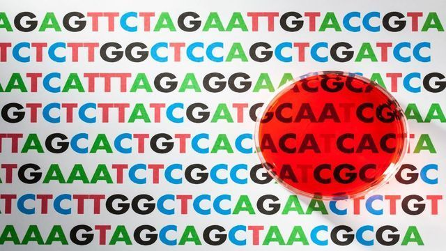 Personalized Medicine Complicated by Overlapping Versions of Our Genetic History