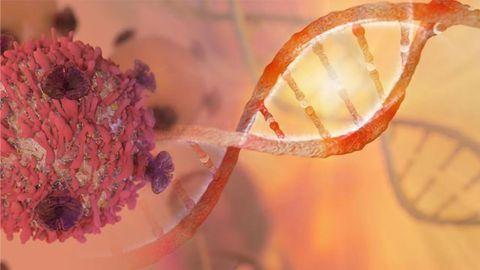 Novel Tumor Sampling Approach Improves Genetic Testing for Cancer Treatment